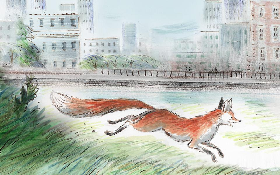 Drawing of Gaspard the Fox running through grass, buildings in the background