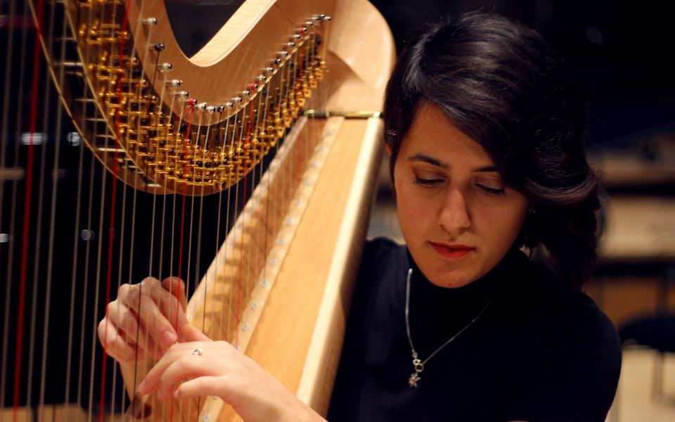 A member of the Philharmonia MMSF Instrumental Fellowship Programme plays the harp